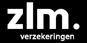 Maverick-nudging-gedragsveraning-lezing-workshop-ZLM