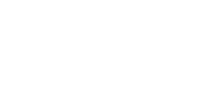 Maverick-nudging-gedragsveraning-lezing-workshop-ministerie-infrastructuur-waterstaat